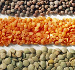 local places to buy lentils